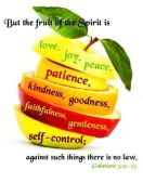 fruit of the spirit image